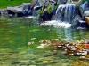 bio-bazeni-jezera-za-plivanje