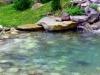 bio-bazeni