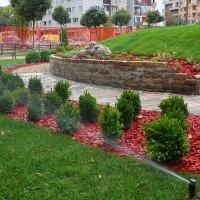 Senzorni vrt, Novi Sad